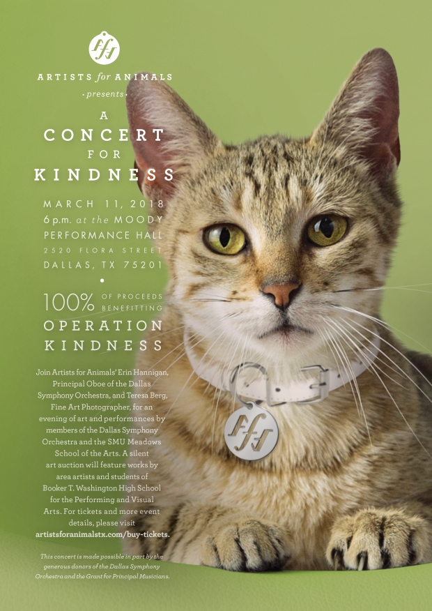 3BON170014 AFA_Concert for Kindness2018_DSO Pulse Ad.jpg