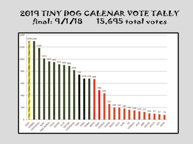 VOTE TALLY final_1