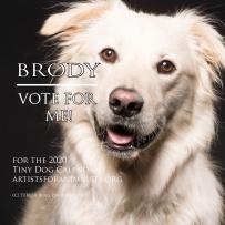 brody vote