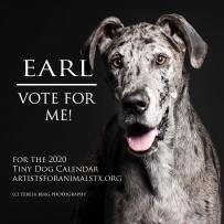 earl vote