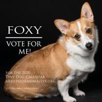 foxy vote