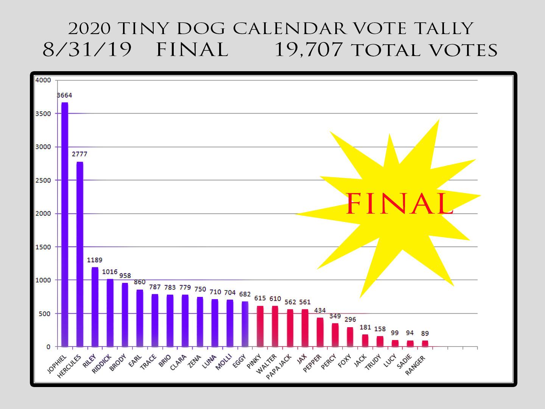votes FINAL 2019